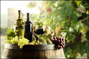 portuguese-wines